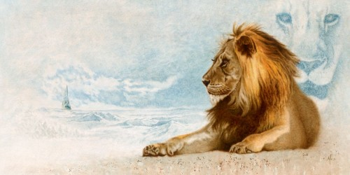 Mike Kupka - The Great Lion Narnia