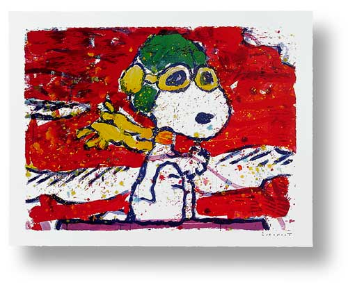 Tom Everhart - Low Fat Meal Over Santa Monica - Limited Edition print